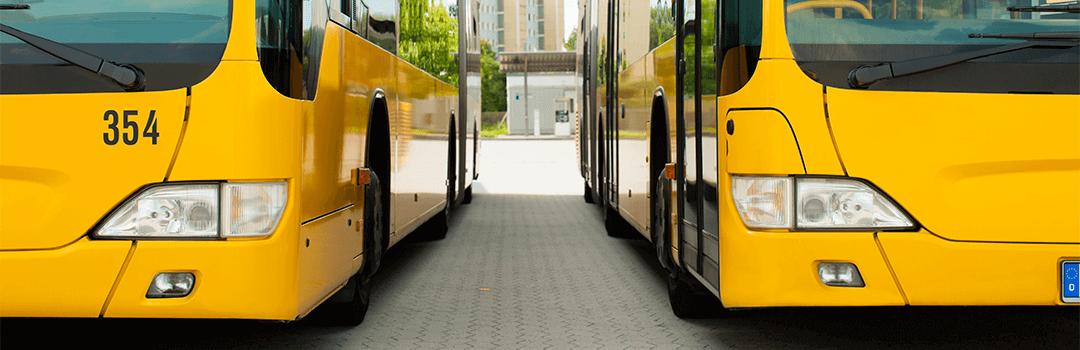 Yellow buses in southampton